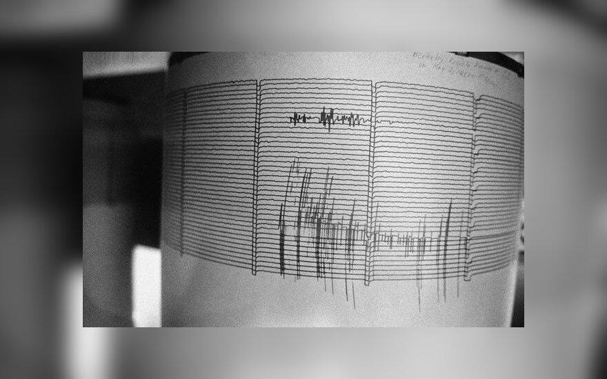 Seismografas