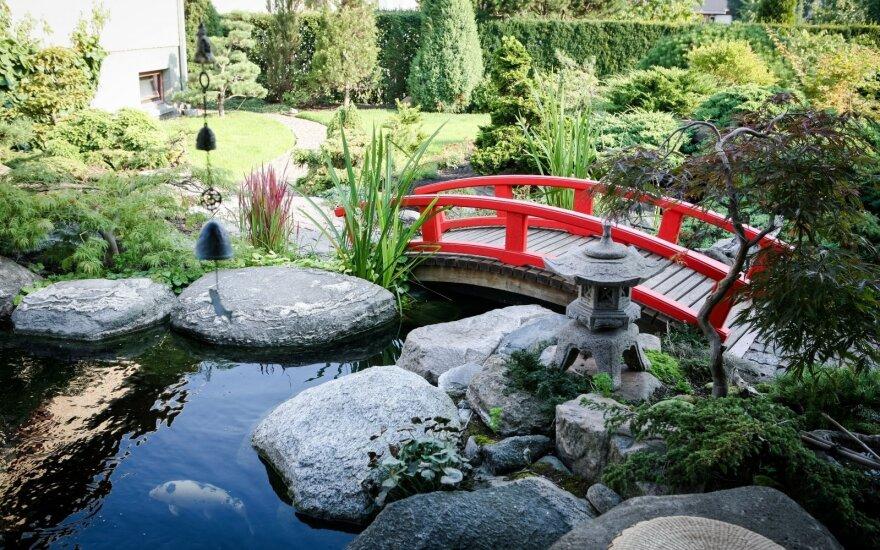 Vietoj daržo sukūręs japonišką sodą nė kiek nesigaili: čia kasdien vyksta maži stebuklai