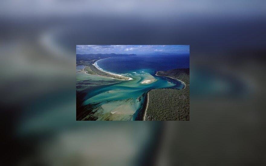 Tasmanijos gamta