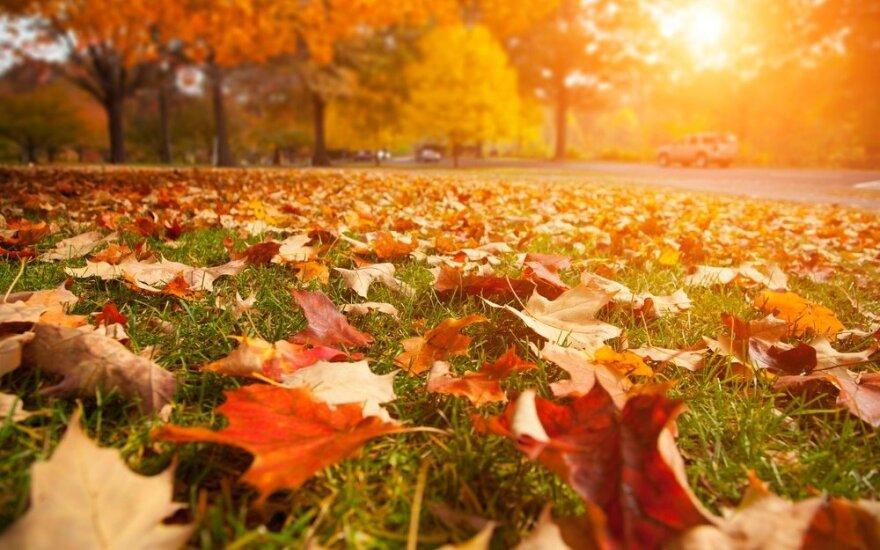 Lolitos horoskopas savaitei (spalio 10 – 16 d.): atsivers naujos galimybės