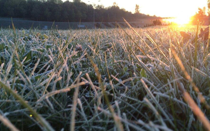 Pirmoji šalčio auka Šiauliuose: savo namuose sušalusio vyro medikams nepavyko išgelbėti