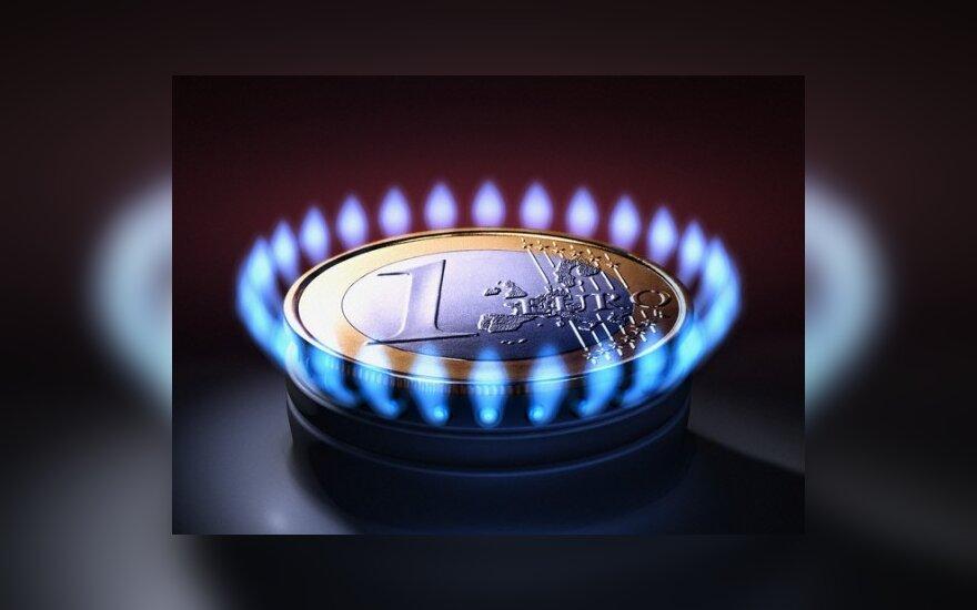 A.Sekmokas: Lietuva už dujas moka maždaug trečdaliu daugiau nei Vokietija