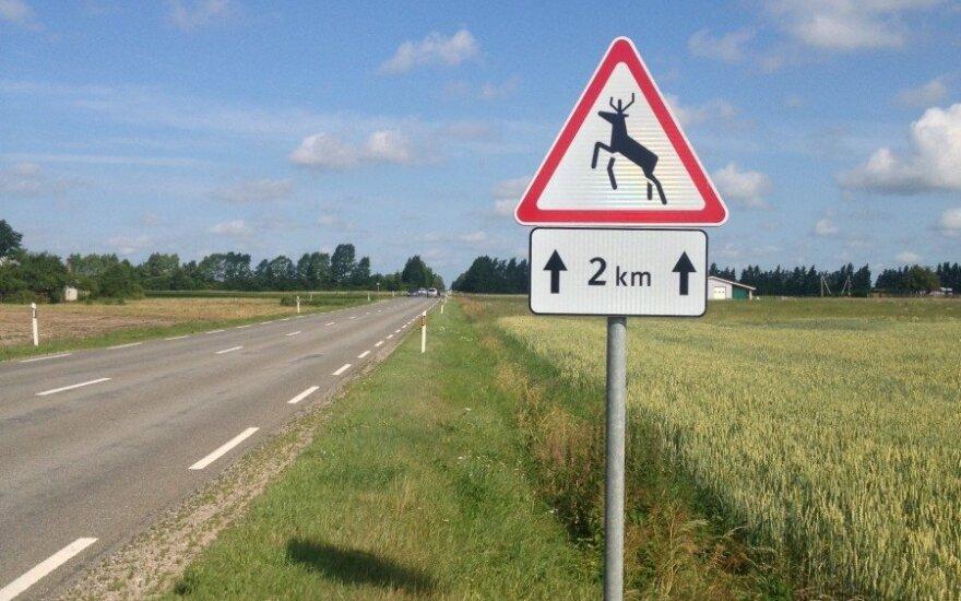 Taip pažymėtose vietose vairuotojams reikėtų būti ypač atidiems