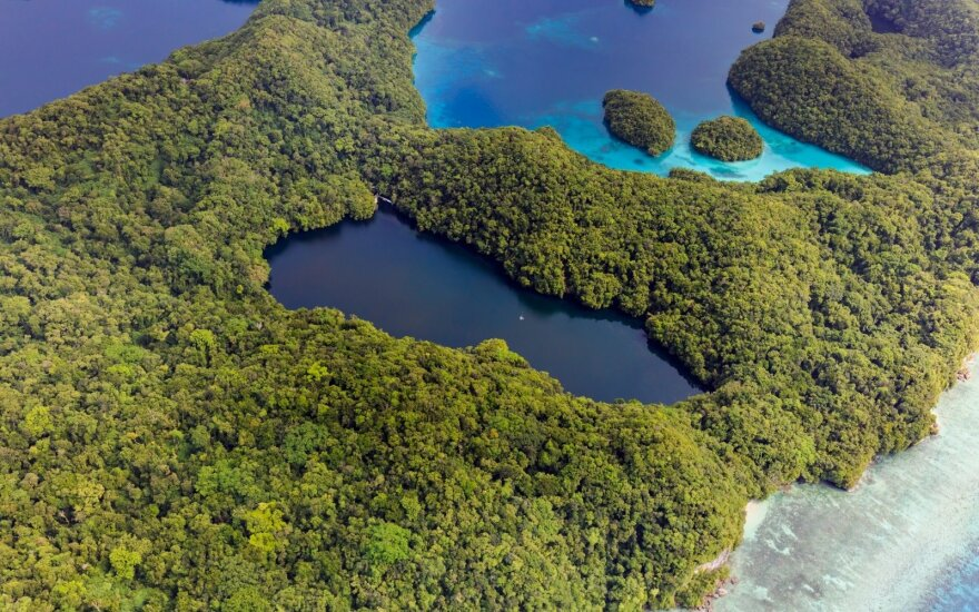 Medūzų ežeras