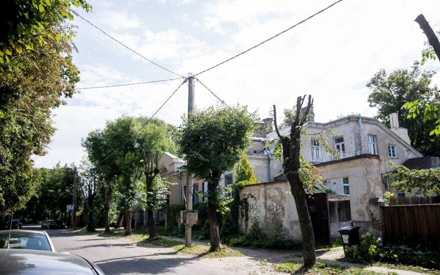 Žvėryno gyventojai pasipiktinę: kodėl dėl elektros laidų turi kentėti medžiai?