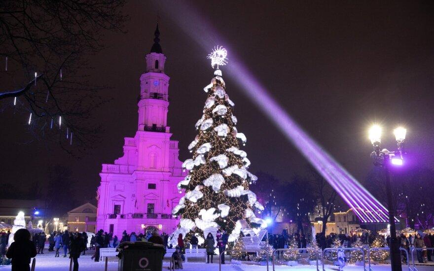 Kaunas šiemet ruošiasi nustebinti savo Kalėdų egle: prasitarė, ko galime laukti