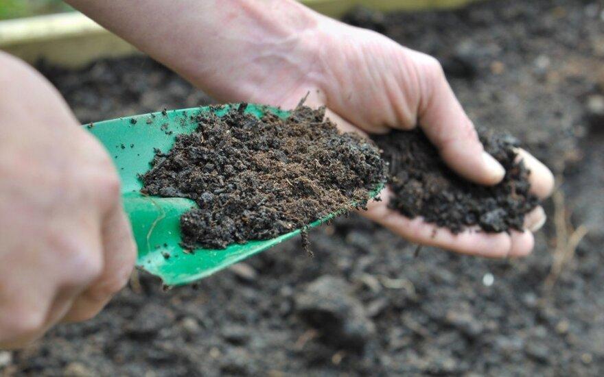 Aplinkosaugininkai sučiupo vyrą, vagiantį derlingą dirvožemį