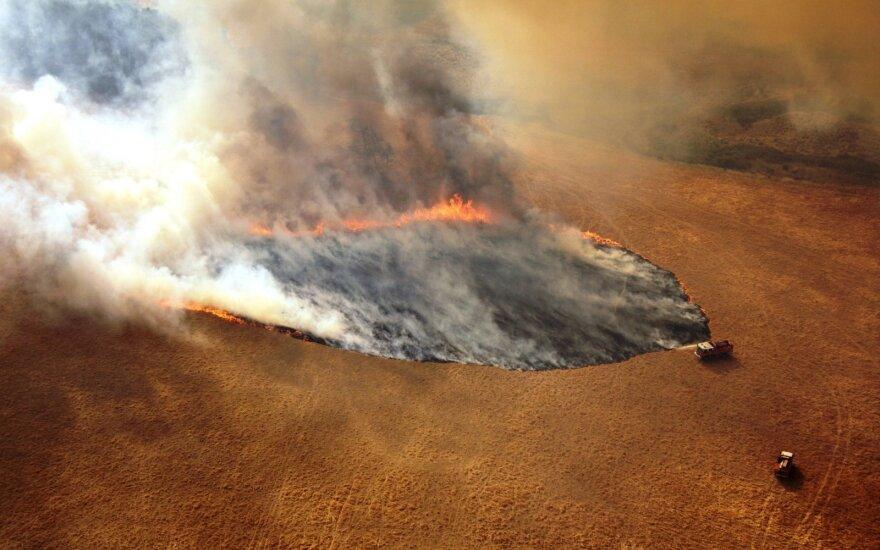 Australija dėl gaisrų ragina evakuotis ketvirtį milijono gyventojų