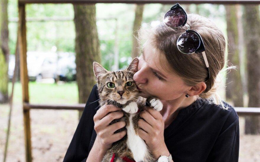 Visą gyvenimą buvusi šunų mylėtoja bijojo, kad Bandita bus ta katė, kuri nerodo meilės