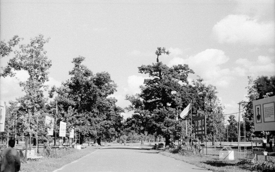 Vytauto parko alėja, 1961 m. //  Stanislovas Lukošius, Kauno miesto muziejaus nuotrauka