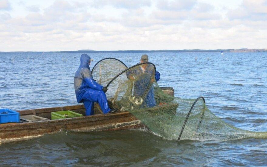 Drausmins žvejus verslininkus