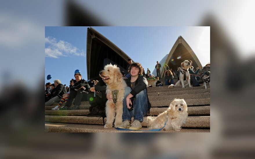 Sidnėjuje surengtas koncertas šunims