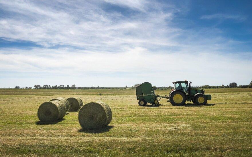 Parama bendradarbiavimui sustiprino šeimos ūkius