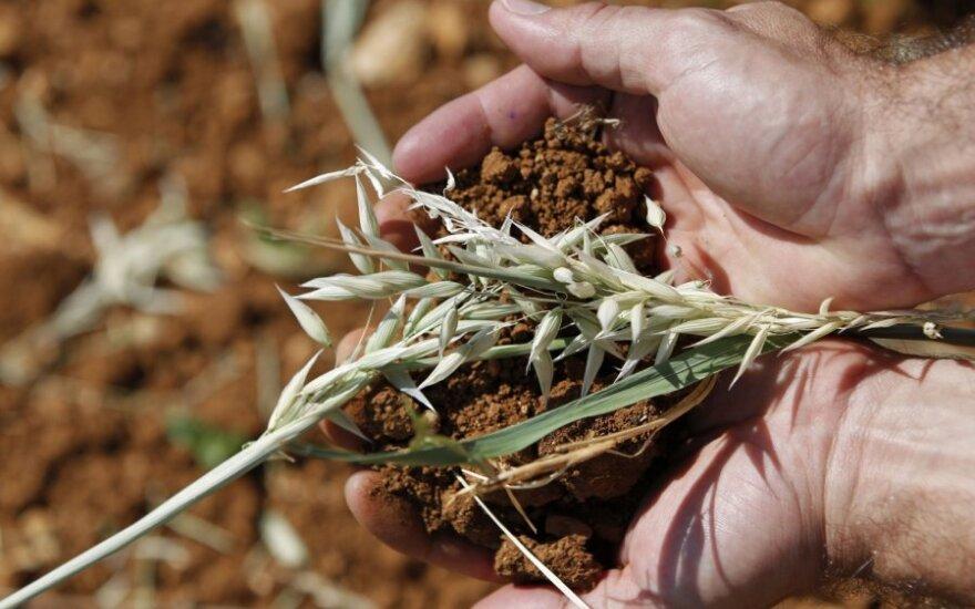Užteršus ar suardžius dirvožemį, galime pamiršti apie turtingą ateitį