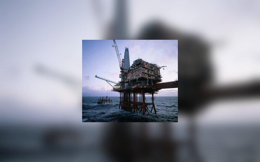 Naftos paieška