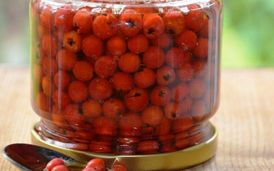 Vitaminų bomba: šermukšniai meduje