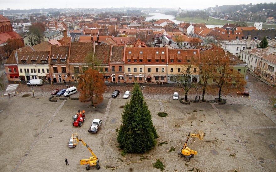Pagrindinė Kauno Šv. Kalėdų eglutė