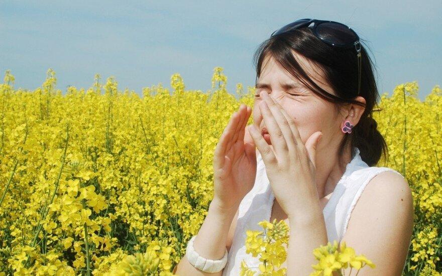 Alergijos: kas jas sukelia ir kaip su jomis kovoti?