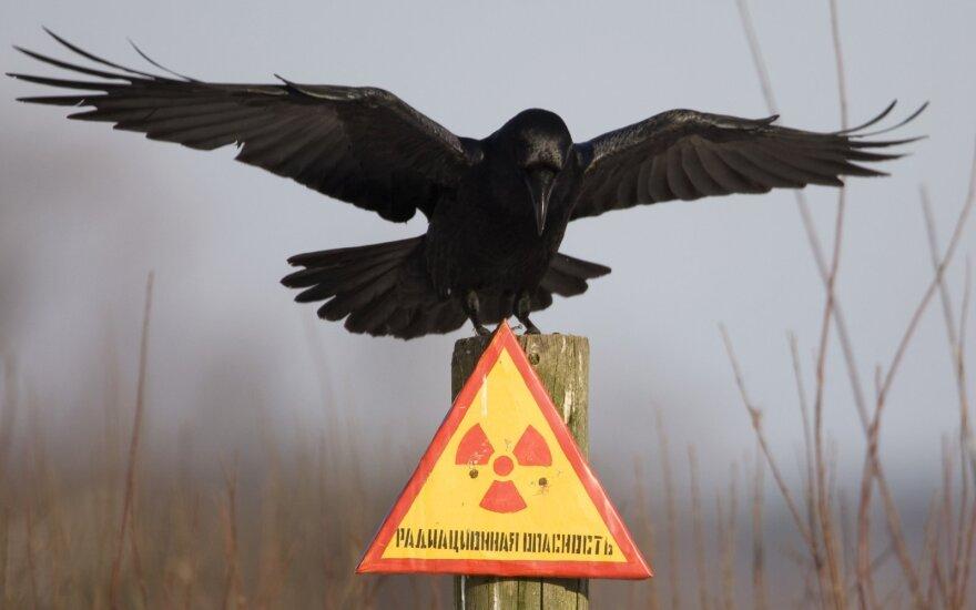 Černobylio evakuacijos zona po avarijos