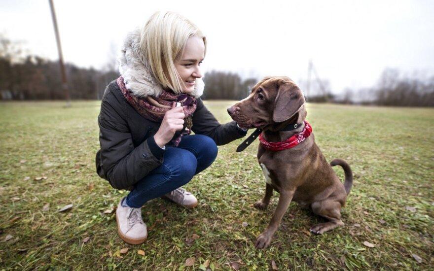 Augintinių nesutarimų bijojusi mergina jaudinosi be reikalo: katė ir šuo tapo draugais