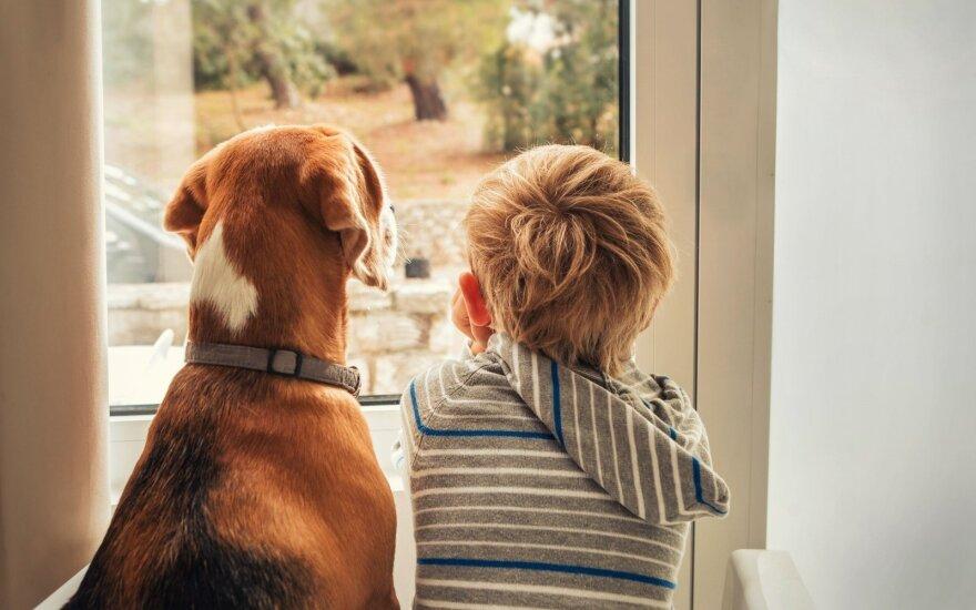 Šeimininkė išsiliejo: kas šioje valstybėje apgins amsintį šunį?