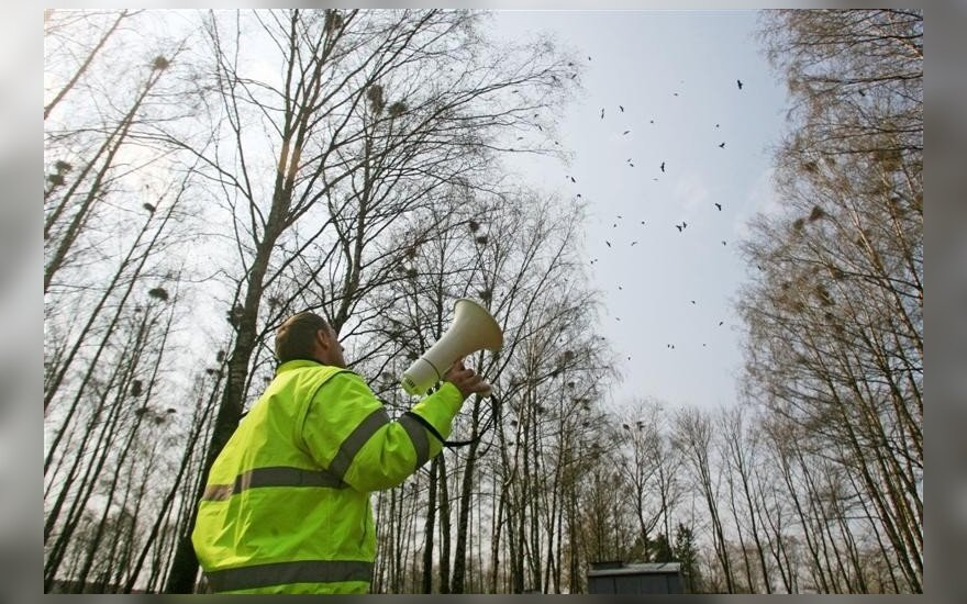 Alytuje su varniniais paukščiais kovojama įvairiomis priemonėmis