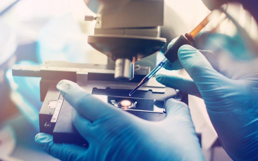 Mokslininko patirtis: nuo gramo iki tonos