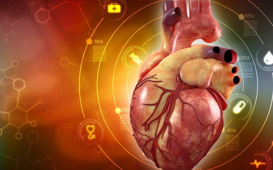 Širdies ir kraujagyslių ligos - Koronarinė Širdies liga. ŠUNTAVIMAS