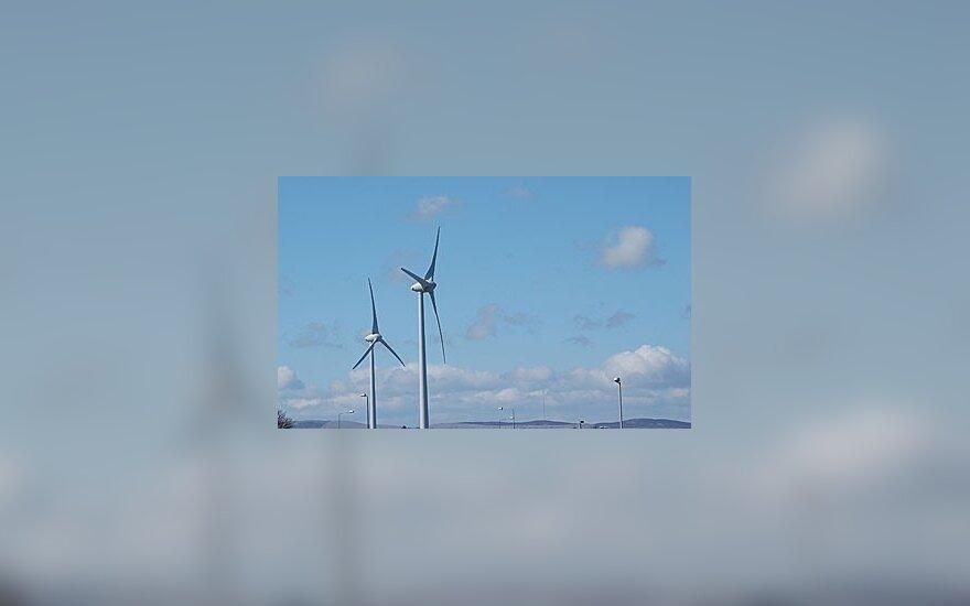 ERC ketina investuoti į vėjo jėgaines