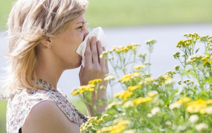 Varvanti nosis: pavasarinis peršalimas ar sezoninė alergija?