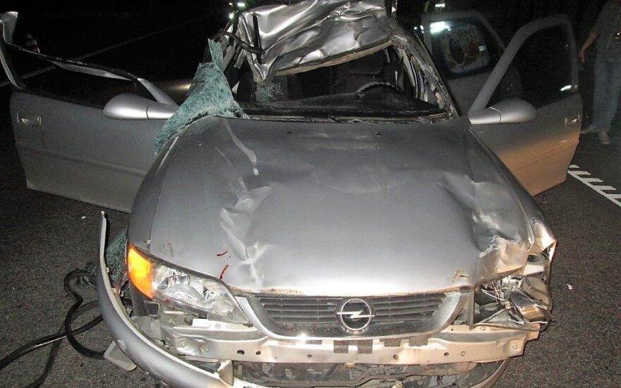 Naktį automobilis susidūrė su briedžiu – sužalotą merginą ištiko koma