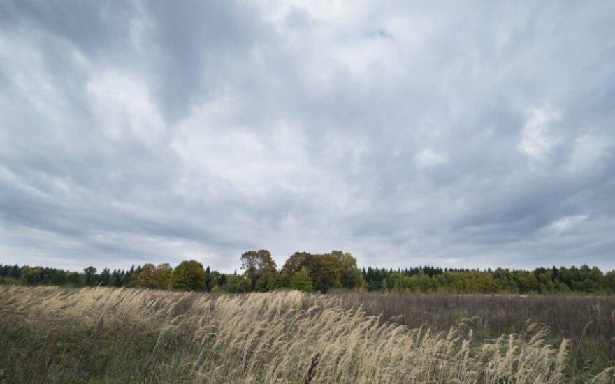 Lietuvoje mažėja apleistų žemių