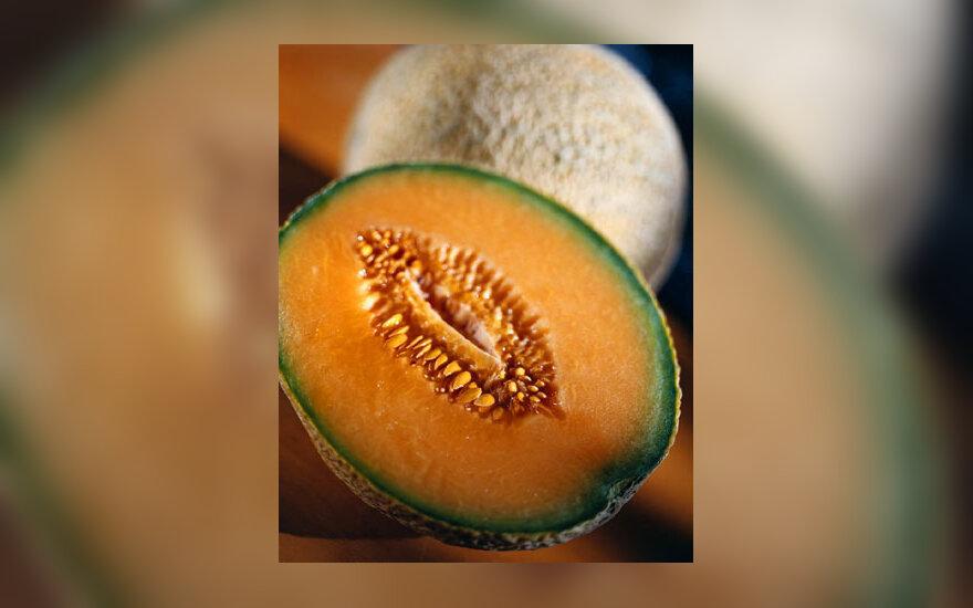 Vaisiai, melionas