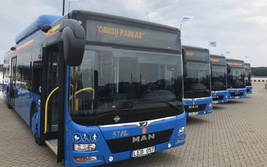 Klaipėdos valdžia nesutinka grąžinti 415 tūkst. eurų ES lėšų, skirtų autobusams