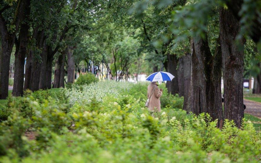 Lietus trauksis, grįš lietuviškos vasaros šiluma
