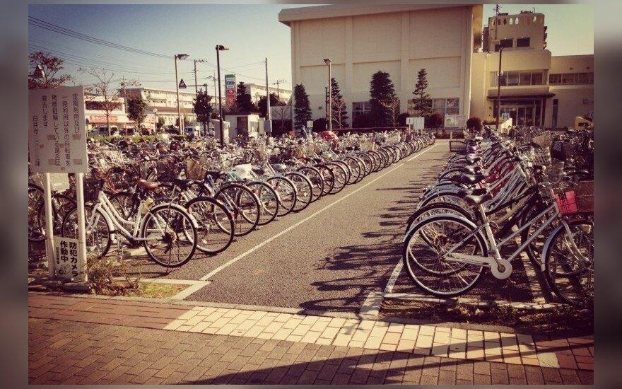 Viena Japonijoje: ką patyriau kitoje pasaulio pusėje