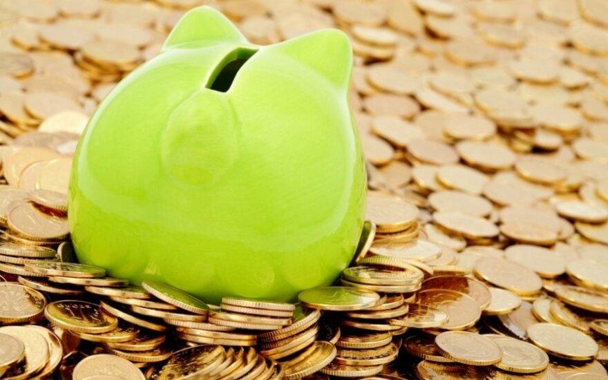 Daužome kiaules taupykles: kiek monetų galima atnešti į banką?
