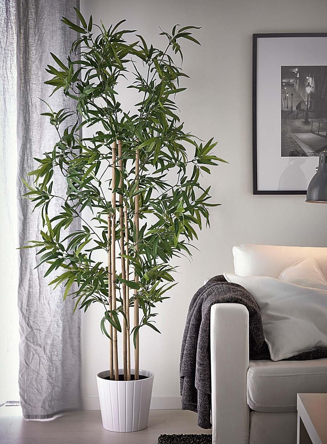 Augaliniai motyvai interjere nuo imitacij iki for Pegatinas decorativas pared ikea