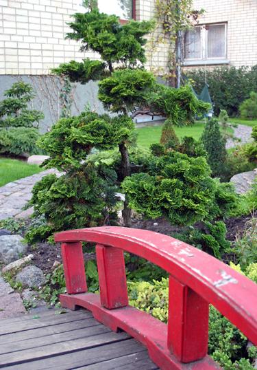 Kęstučio Ptakausko japoniškas sodas Alytuje_5
