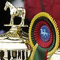 """Žirgų lenktynės """"Sartai 2007"""", Dusetos, apdovanojimai, taurės"""