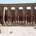 Egiptas_28