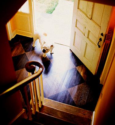 Durys ir šuo