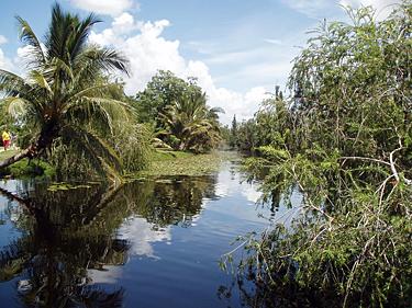 Kuba. Peninsula de Zapata
