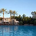 Palmės, baseinas, vasara, atostogos, poilsis