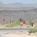 Kelias, STOP ženklas, kaktusai, karštis, kalnai