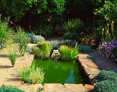 Vanduo sode, tvenkinėlis