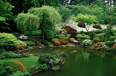 Vanduo sode, tvenkinys