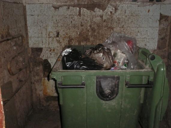 Šiukšlių konteineriai – tiksinti ligų bomba