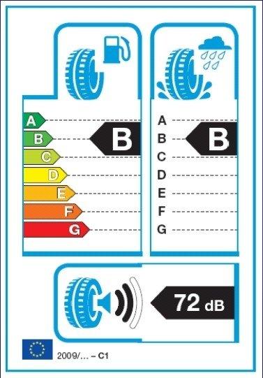 Padangų etiketės pavyzdys