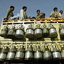 Indijos pienininkai Delyje